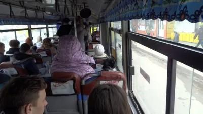 Автобус для собак .