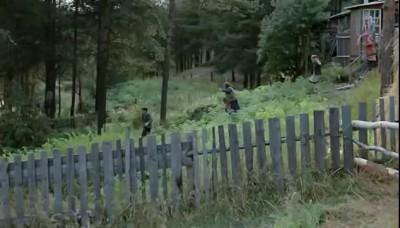 Беги дядя Мить