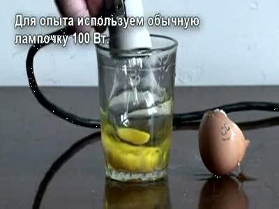 Берегите яйца или Держи карман уже
