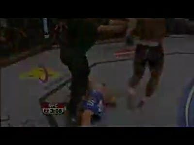 aceufc's - MMA Knockouts - Part 1