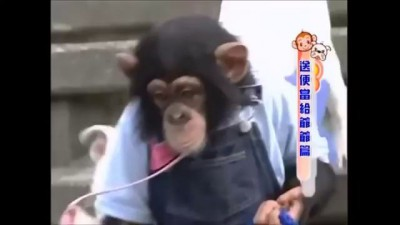 The monkey's name is Pakun. His dog is James. When they cross a river, I almost fell off