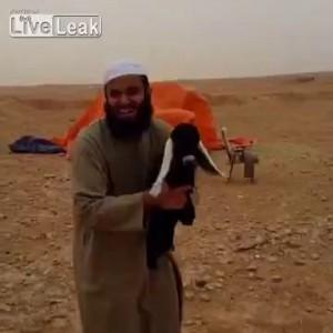 Сириец и коза