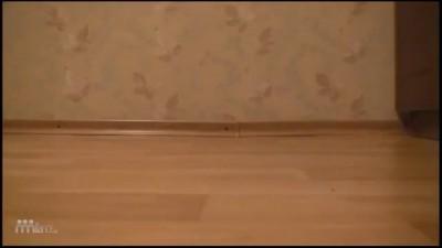 Кот за 3 секунды до сотни ах ха ха