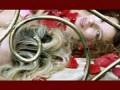 Борис Моисеев и Стрелки International - Sex-XL revolution [HD]