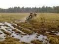 Квадроцикл в поле