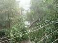 Сильный ливень и ветер пр. Правды 08.08.2012 Днепропетровск