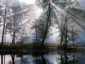 ♫ Вижу чудное приволье | Русские народные песни (with English Subtitles)