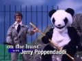 Робоцып - большая панда