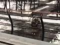 Уборщик снега на ВДНХ