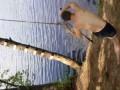 Эпичный прыжок с тарзанки