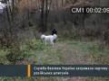 Russian troops invaded the Ukraine - Российские войска вторглись на Украину