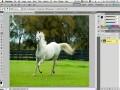 Top 5 новых возможностей Adobe Photoshop CS5