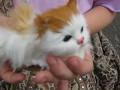 Кошечка - игрушка
