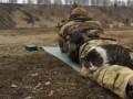 Кот и стрельбище