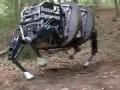 В США проходит испытания четырехногий робот-мул