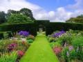 Блог - Привет.ру - Цветущие сады и парки!!! .  - Личный интернет дневник пользователя...