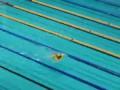 На чемпионате России по плаванию в бассейн прыгнул болельщик в детском надувном круге в виде уточки