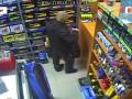 В Екатеринбурге покупатель стащил ароматизатор, пока продавец искал ему нужный товар