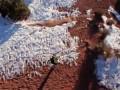 Самые безумные качели в мире
