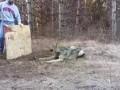 Волк попал в капкан