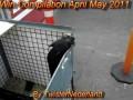 Сборник баянов за апрель-май