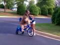 Пес - велосипедист