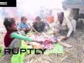 Массовое жертвоприношение в Непале ...