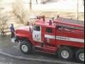 Как пожарные снимают котов с деревьев