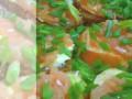 Простой и вкусный домашний рецепт приготовления бутербродов с красной рыбой