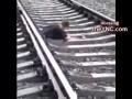 Мужика переехал поезд пополам