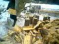 Так  рубят дрова трактористы