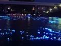 100 000 «светлячков» по реке в Токио
