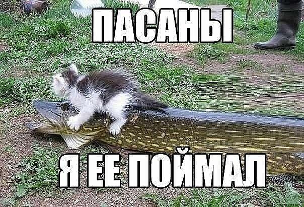 photo_1456492192