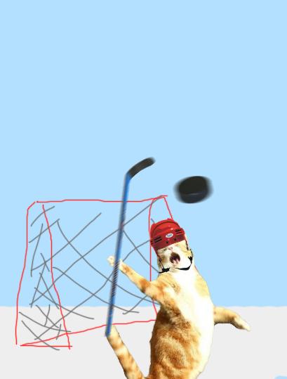 hockeycat